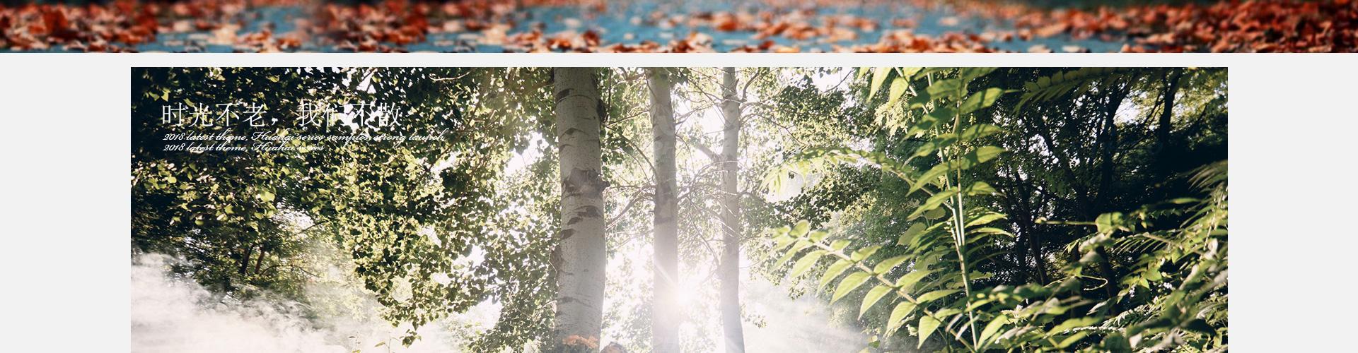 《时光森林》